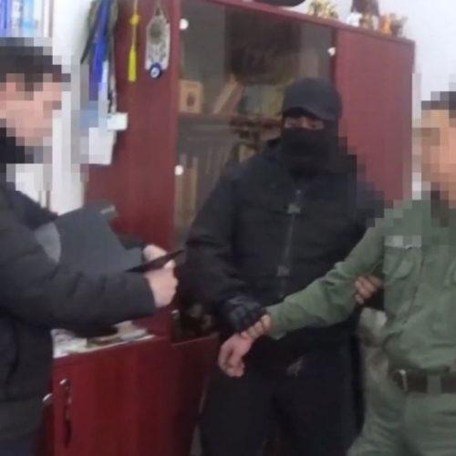 Глава Кинологического центра арестован в Алматы