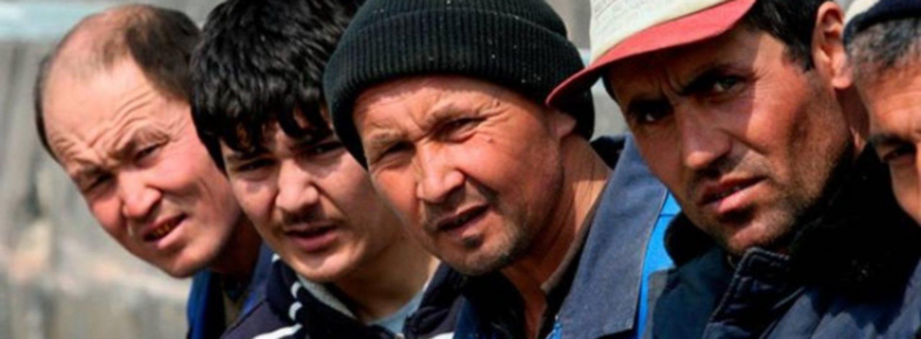 Как законно привлечь трудовых мигрантов, объяснил Биржан Нурымбетов