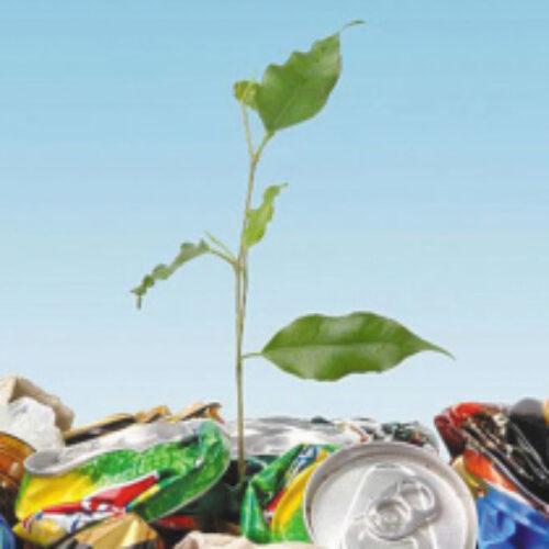 2021 год предложили объявить годом экологии в Казахстане